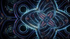 Cosmic Flower Unfolding on Vimeo