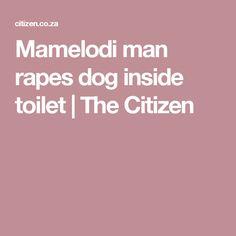 Mamelodi man rapes dog inside toilet | The Citizen