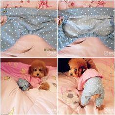 DIY Cute Pants for Dog 1