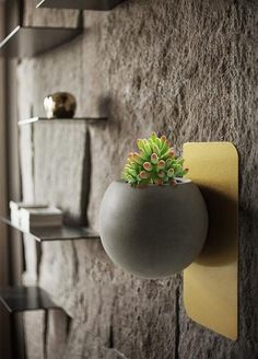 Decorate your home with your favorite green plants with the elegant art-deco Christophe Modern Wall Planter! Made from durable, eco-friendly metal cement. Free Worldwide Shipping & Money-Back Guarantee