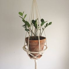 This isnt your traditional plant hanging. With a 10 steel ring and macrame netting, you can stylishly balance your 8 terra cotta pot and water plate. The dramatic, long tail adds more texture measuring at 18. Without a pot, the hanging is 45 overall.  *Change things up a bit and hang this in your kitchen to hold apples or potatoes.