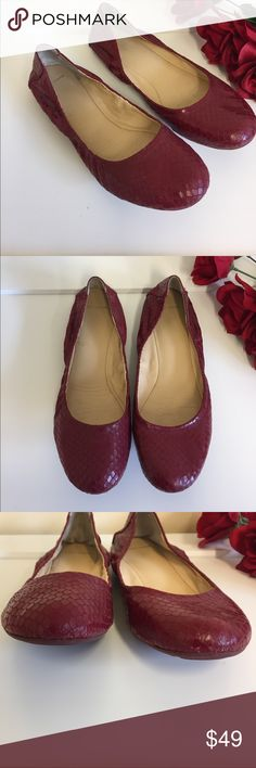 """Cole Haan Red Leather Snake Skin Ballet Flats 9B Cole Haan leather snake print flats.  Size 9 B.  Very good condition with light scuffing on toe and heel areas, soles in great condition.  Insole measures approximately 9-3/4"""".  Great pair of flats! Cole Haan Shoes Flats & Loafers"""