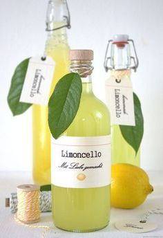 Perfekt im Sommer: Limoncello selber machen. Rezept: EmmaBee Perfekt im Sommer: Limoncello selber machen. Limoncello Cocktails, Making Limoncello, Pina Colada, Cocktail Drinks, Cocktail Recipes, Drink Recipes, Vegan Recipes, Bee Food, Homemade Anniversary Gifts
