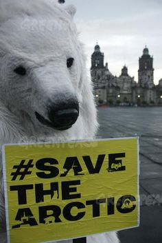 A polar bear stands by Mexico City's Metropolitan Cathedral to demand immediate global action to protect the Arctic from destructive oil drilling. 06/21/2012  © Greenpeace
