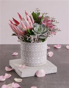 Gifts King Protea And Mixed Flowers Happy Birthday Candles Pink Happy Birthday Spiral Candles