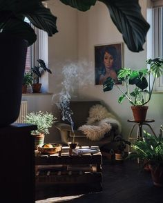 Plant and light filled = cozy