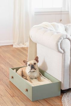This simple and quick DIY project turns a dresser drawer into a cute, cozy dog bed that coordinates with your home! Farmhouse Dog Beds, Diy Dog Bed, Homemade Dog Bed, Diy Drawers, Old Dressers, Animal Projects, Diy Stuffed Animals, Dog Accessories, Cat Toys