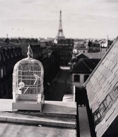 André Kertész - Paris ( 1931)