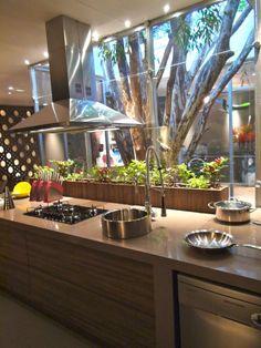 cozinha gourmet com jardim de inverno e horta na bancada coifa de ilha cooktop