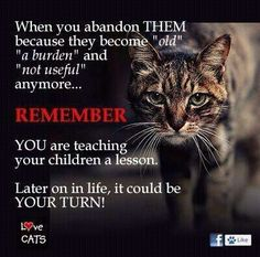 Remember... Children learn what they live