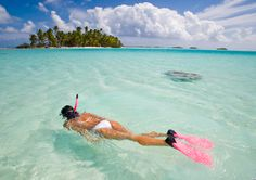 Snorkeling in paradise. There is almost nothing more wonderful to do than snorkel in the Great Barrier Reef.