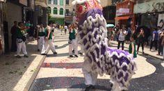 Macau © Viaje Comigo Macau, Portugal, Animals, Traveling, Animales, Animaux, Animal, Animais