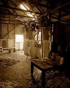 Shearing Shed near Polly Mc Quinns wier Strathbogie, North East Victoria. Digital sepia mix from scanned original black and white negative. Australian Sheep, Australian Desert, Australian Bush, The Thorn Birds, Local Events, Country Life, Country Homes, Country Living, Country Style