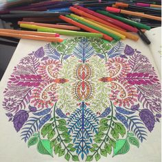Johanna Basford Zentangle Coloring Enchanted Forest Maryland Garden Zentangles Zen Tangles Doodles