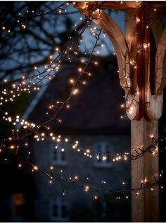 Outdoor Twinkle Lights inspo fairy lights Outdoor Christmas Decorations & Lights, Large Light Up Outdoor Reindeer UK Wallpaper Natal, Lit Wallpaper, Wallpaper Ideas, Twinkle Lights, Twinkle Twinkle, String Lights, Festoon Lights, Pretty Lights, Jolie Photo