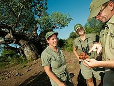 Book your field guide or nature training today with Ecotraining in Mpumalanga, South Africa - Dirty Boots Kruger National Park, National Parks, Adventure Activities, Gap Year, Field Guide, African Safari, Greatest Adventure, South Africa, Training