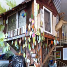 Treehouse in Mollusk Surf Shop