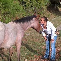 Ganesh mon #cheval  J'ai l'animal se je mérite comme on dit 😁. Il mange comme…