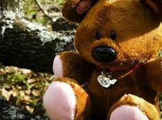 1000 images about all about pooky on pinterest teddy bears bears
