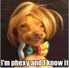 I'm phexy and I know it