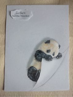My Animal Drawings Try To Leap Off The Page   Iantha Naicker
