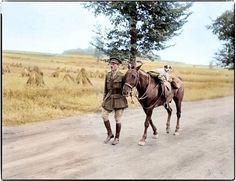 WW1, 25 August 1916; British captain leads horse with dog near Amiens, France. Colour by Doug. ––Terrierman's Daily Dose: Dogs of World War I