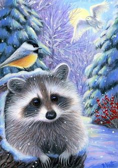 RAFAELLA'S SNOWY EVENING - Rafaella has crawled out of her cozy log home to enjoy the soft falling snow with some woodland friends. Raccoon Art, Illustration Noel, Cute Little Animals, Cute Friends, Wildlife Art, Animal Drawings, Pet Birds, Painting & Drawing, Cute Pictures