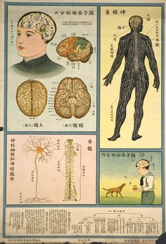 """Retronaut - 1933: Chinese """"Understanding the human body"""" Public Health Posters"""