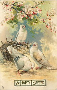 Full Sized Image: three white pigeons, two on the ground, left one pecking, third pigeon perched atop basket - TuckDB Vintage Birds, Vintage Easter, Vintage Art, Easter Art, Easter Crafts, Vintage Greeting Cards, Vintage Postcards, Easter Paintings, Butterfly Illustration