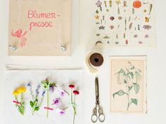 Blumenpresse basteln