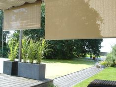 outside curtains for privacy and or low sun Outside Curtains, Pergola, Outside Decorations, Parasol, Outdoor Living, Outdoor Decor, Trees To Plant, Ramen, The Outsiders