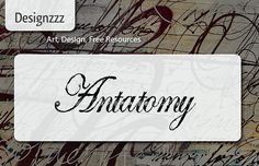 Gorgeous Calligraphy Fonts with Quill Writing Effect