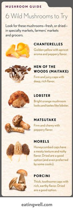 Healthy Mushroom Recipes