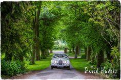Plum Park Wedding Photographer 049