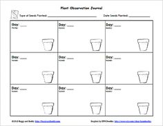 Does Salt Water Affect Plant Growth? - Science Fair   Science Project Plant Growth Charts