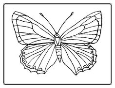 butterflies | Butterfly Coloring Pages - Butterfly 13