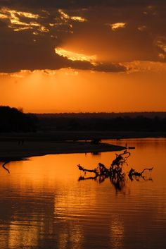 Africa Overland Tours: Kenya to Zambia Victoria Falls, Nairobi, Kenya, Safari, African, Tours, Sunset, Outdoor, Sunsets