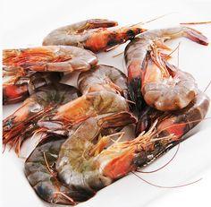medium shrimp