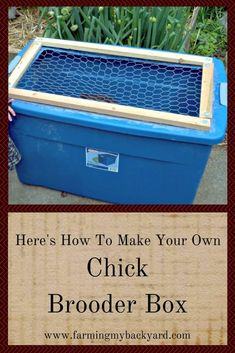 Here's how to make an easy DIY chick brooder box for a small backyard flock just by using chicken wire and a plastic tub. Chicken Brooder Box, Best Chicken Coop, Building A Chicken Coop, Chicken Runs, Chicken Wire, City Chicken, Chicken Shack, Clean Chicken, Chicken Feeders