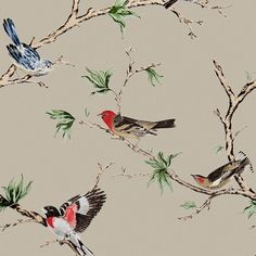 Villa Fioro Wallpaper. A wallpaper showing colourful birds perched on branches on a light taupe background.