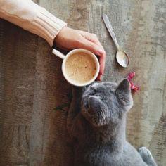 ¿Un café acompañado de historias? O ¿Historias acompañadas de un café?