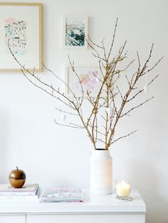 Birch branches! We are going to be having plenty of these on our reception tables at our wedding! They will be placed in clear vases and nestled among river rock. They are so beautiful and very autumnal.