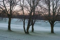 Bogstad Golfcourse at first light, and first frost night, snow may come anytime now.