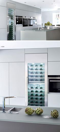 This modern wine fridge has a glass door showing the wines inside.