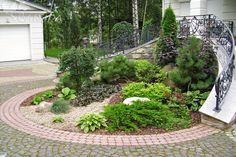 Рокарий около парадной лестницы Side Yard Landscaping, Backyard Garden Landscape, Lawn And Garden, Garden Beds, Front Yard Garden Design, Garden Edging, Evergreen Garden, Garden Drawing, Dream Garden