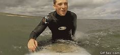 Surfer and Seal GIF - www.gifsec.com