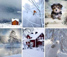 .winter wonders.♥.