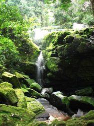 Gabon Catarata en el Parque Ivindo