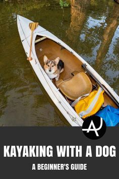 Kayaking With YOUR DOG: A Functional Tutorial – Kayaking Tips for Beginners – Best Kayaking Gear and Accessories - Kayaking Tips – Posts and Articles About Kayaking Kayak Camping, Canoe And Kayak, Kayak Fishing, Kayak Dog, Camping Guide, Camping Cabins, Camping Trailers, Camping Ideas, Pedal Kayak