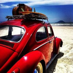 vw surf is up